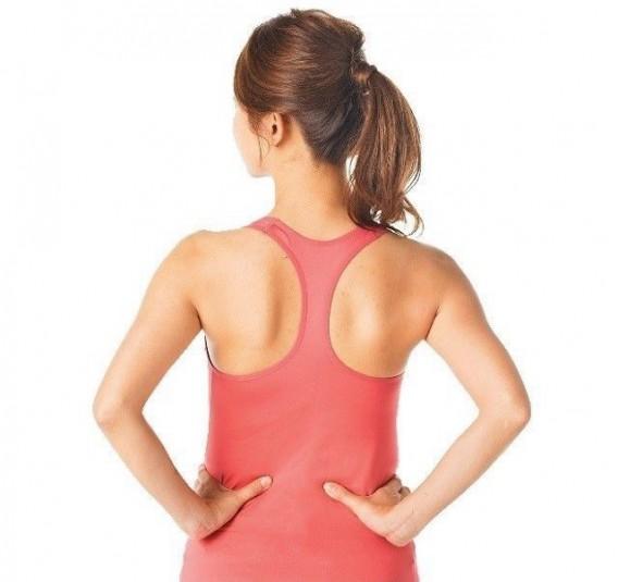 美しい肩甲骨